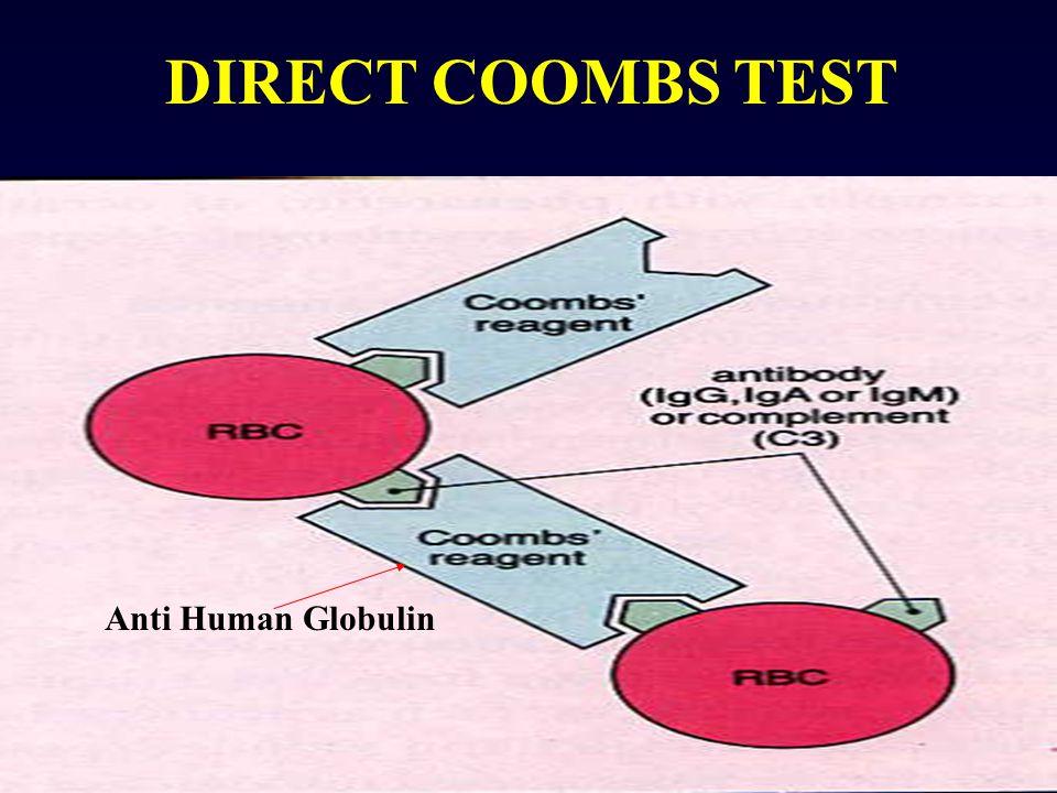 DIRECT COOMBS TEST Anti Human Globulin