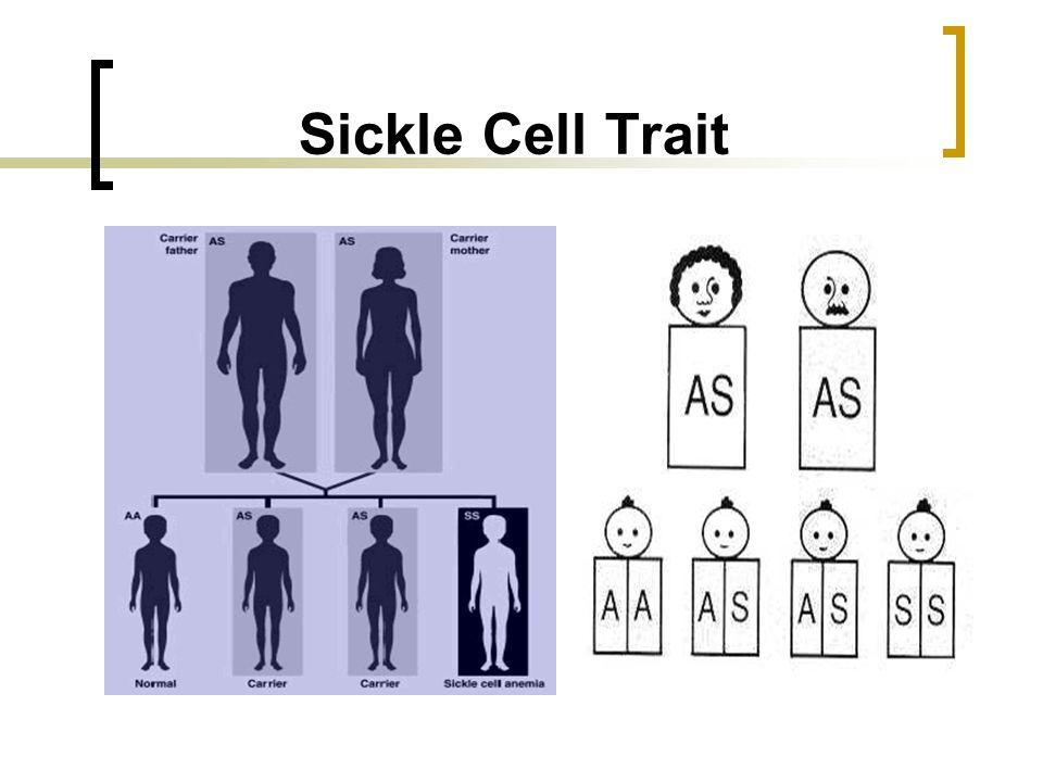 Sickle Cell Trait