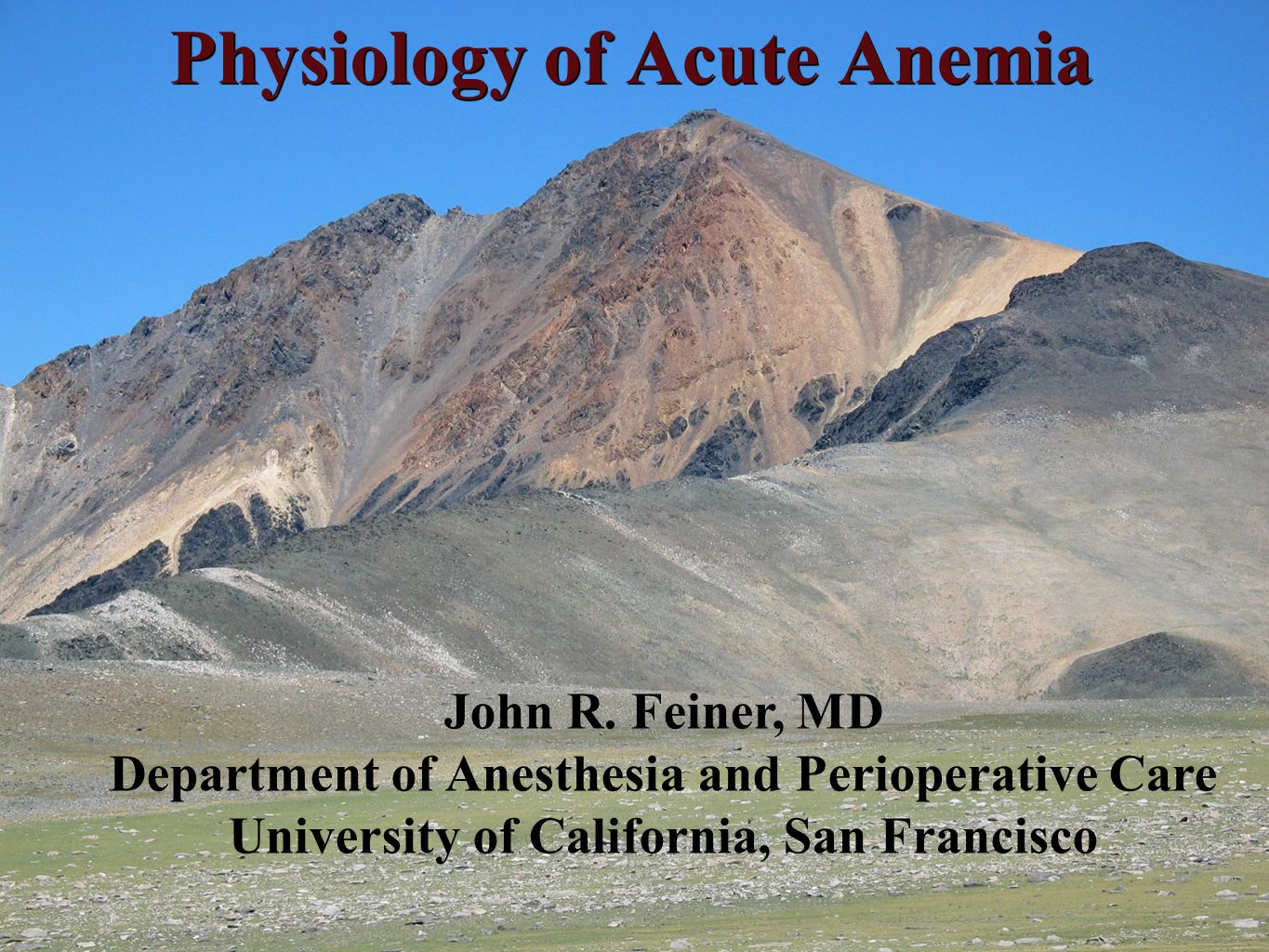 Physiology of Acute Anemia John R.