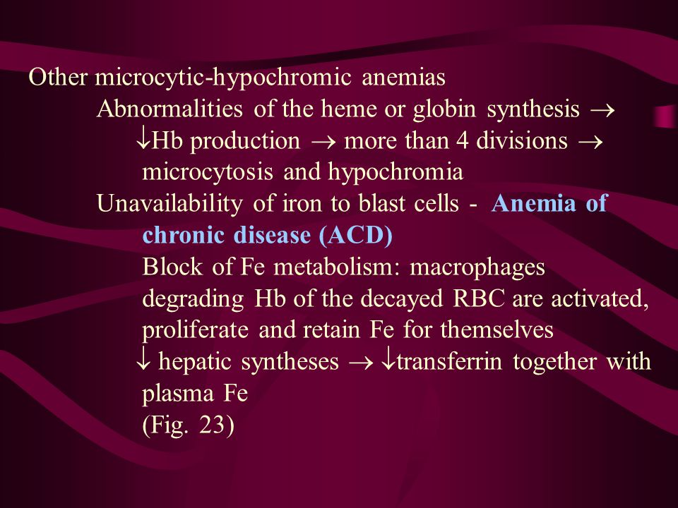Other microcytic-hypochromic anemias Abnormalities of the heme or globin synthesis   Hb production  more than 4 divisions  microcytosis and hypochromia Unavailability of iron to blast cells - Anemia of chronic disease (ACD) Block of Fe metabolism: macrophages degrading Hb of the decayed RBC are activated, proliferate and retain Fe for themselves  hepatic syntheses   transferrin together with plasma Fe (Fig.
