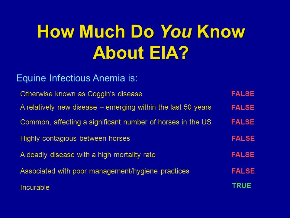 How Much Do You Know About EIA? Incurable Equine Infectious Anemia is: Otherwise known as Coggin's diseaseFALSE A relatively new disease – emerging wi