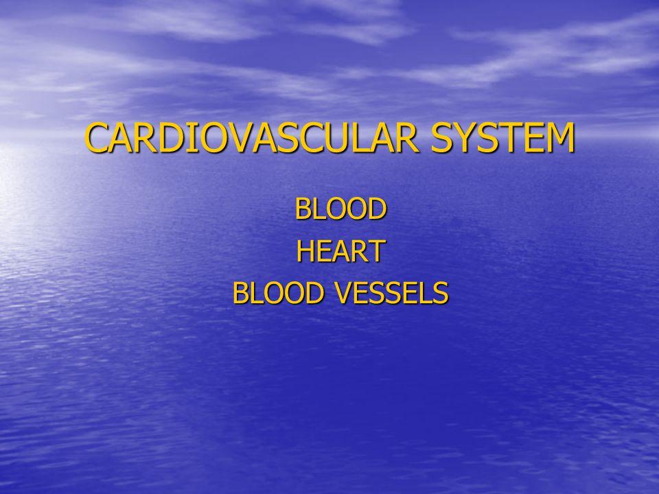 CARDIOVASCULAR SYSTEM BLOODHEART BLOOD VESSELS