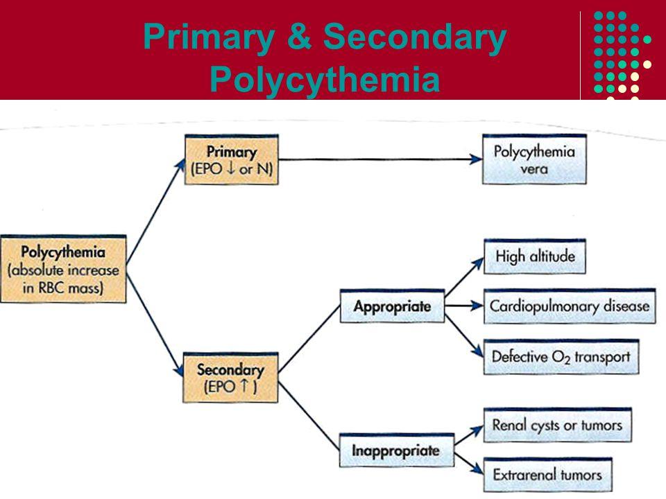Primary & Secondary Polycythemia