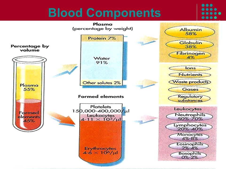 What are the functions of blood components?