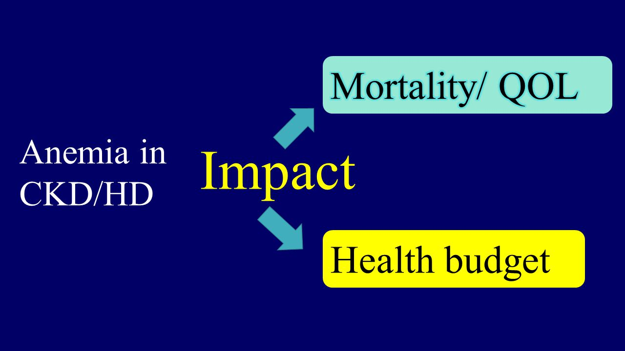 Impact Health budget Anemia in CKD/HD