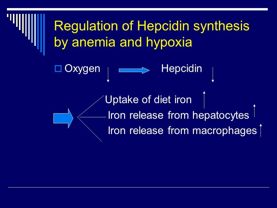 Regulation of Hepcidin synthesis by anemia and hypoxia  Oxygen Hepcidin Uptake of diet iron Iron release from hepatocytes Iron release from macrophages
