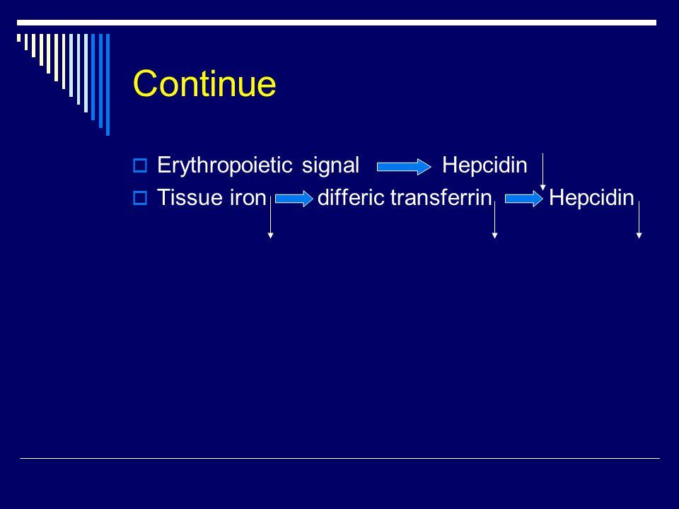 Continue  Erythropoietic signal Hepcidin  Tissue iron differic transferrin Hepcidin