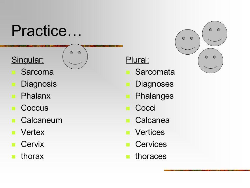Practice… Singular: Sarcoma Diagnosis Phalanx Coccus Calcaneum Vertex Cervix thorax Plural: Sarcomata Diagnoses Phalanges Cocci Calcanea Vertices Cervices thoraces
