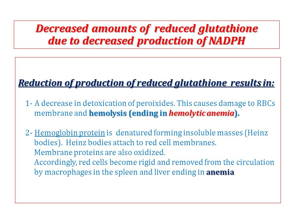 Reduction of production of reduced glutathione results in: 1- A decrease in detoxication of peroixides.