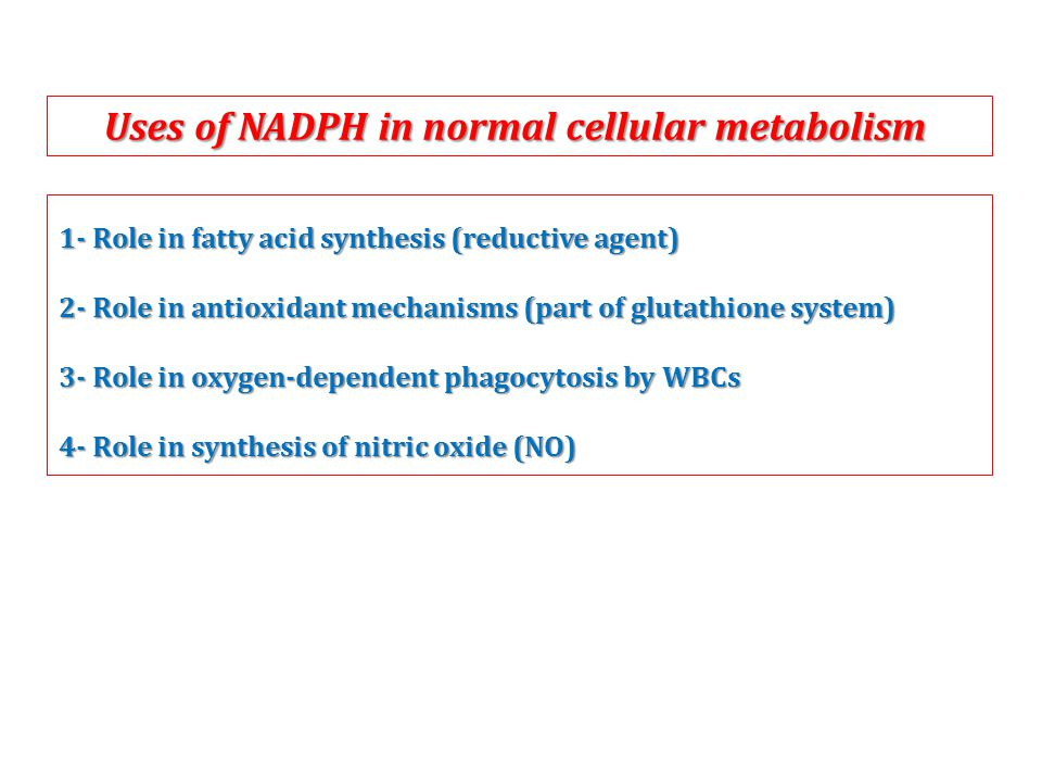 1- Role in fatty acid synthesis (reductive agent) 2- Role in antioxidant mechanisms (part of glutathione system) 3- Role in oxygen-dependent phagocytosis by WBCs 4- Role in synthesis of nitric oxide (NO) Uses of NADPH in normal cellular metabolism