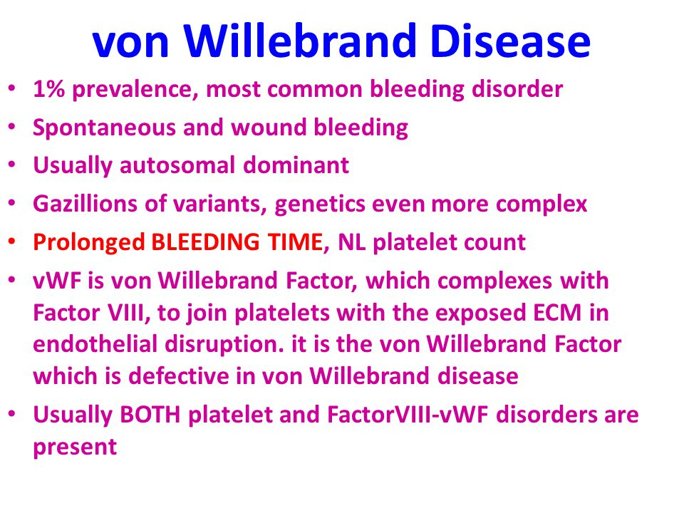von Willebrand Disease 1% prevalence, most common bleeding disorder Spontaneous and wound bleeding Usually autosomal dominant Gazillions of variants, genetics even more complex Prolonged BLEEDING TIME, NL platelet count vWF is von Willebrand Factor, which complexes with Factor VIII, to join platelets with the exposed ECM in endothelial disruption.