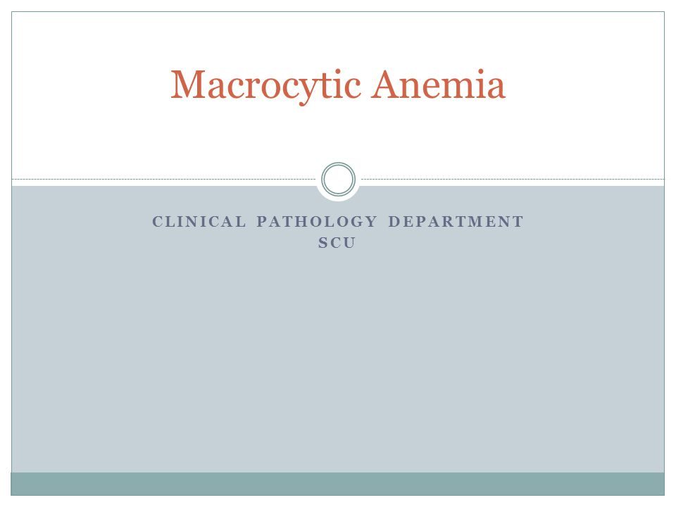 CLINICAL PATHOLOGY DEPARTMENT SCU Macrocytic Anemia