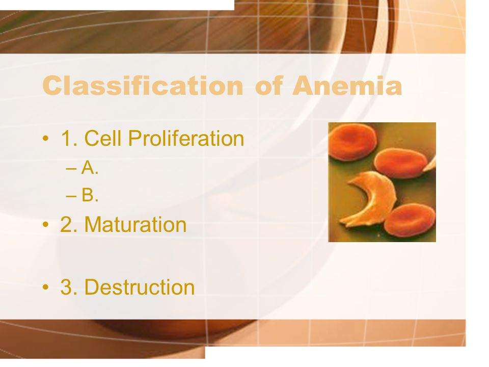 Classification of Anemia 1. Cell Proliferation –A. –B. 2. Maturation 3. Destruction