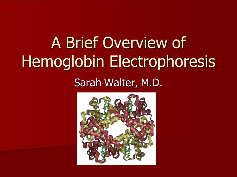 A Brief Overview of Hemoglobin Electrophoresis Sarah Walter, M.D.