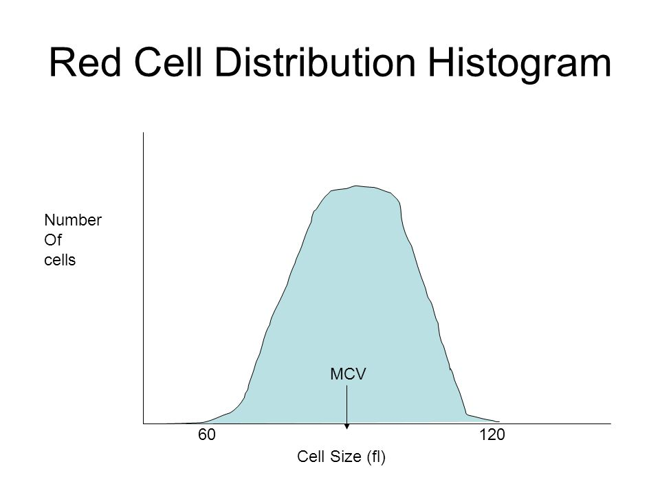 Cell Size (fl) Number Of cells 60120 MCV Red Cell Distribution Histogram