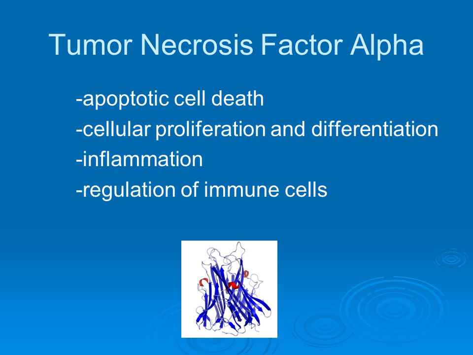 Tumor Necrosis Factor Alpha -apoptotic cell death -cellular proliferation and differentiation -inflammation -regulation of immune cells