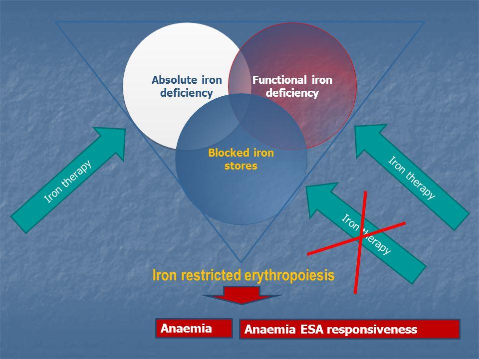 Predictors of Hepcidin variation