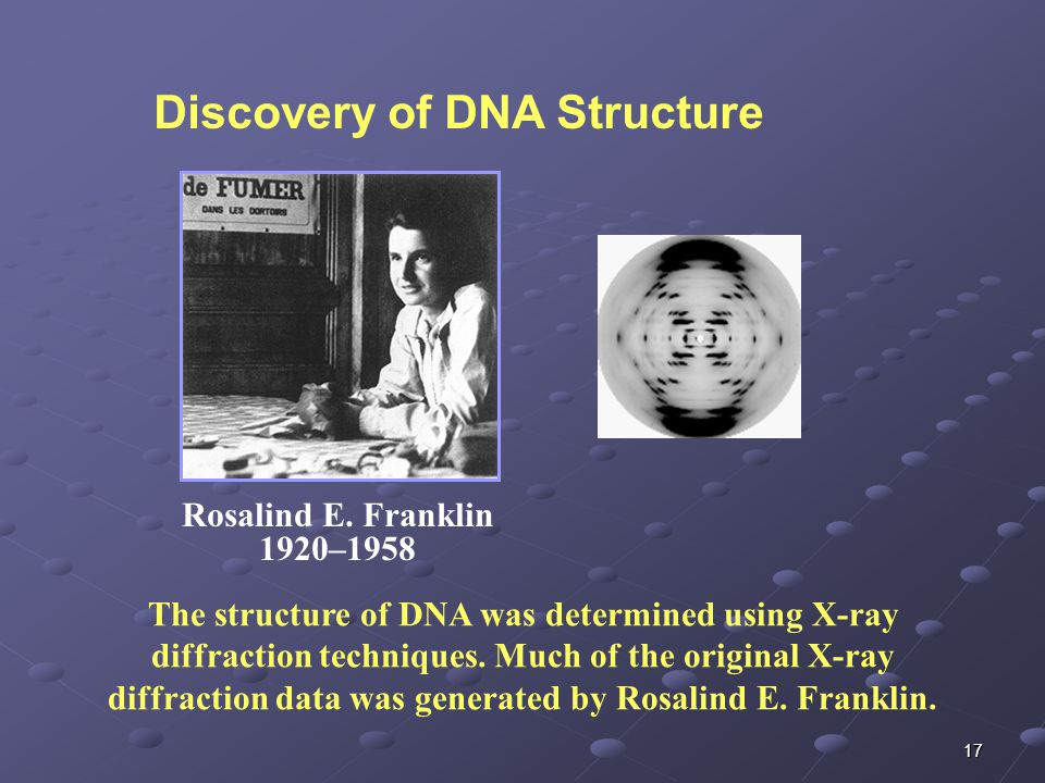 17 Rosalind E. Franklin 1920–1958 The structure of DNA was determined using X-ray diffraction techniques. Much of the original X-ray diffraction data
