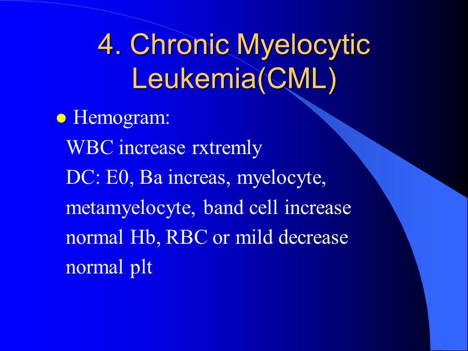 Myelogram: Extreme hypercellularity M:E increase Extreme hyperplasia of granulocyte with increas of myelocyte, metamyelocyte, band cell, E0, Ba Normal erythroid and Megakaryocyte