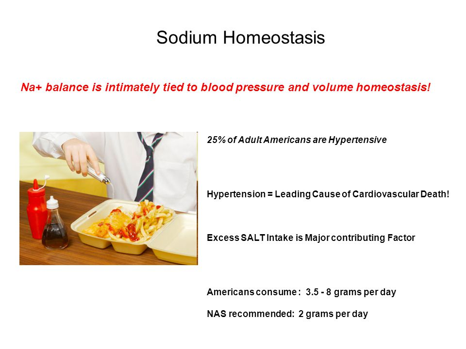 Sodium Homeostasis Na+ balance is intimately tied to blood pressure and volume homeostasis.