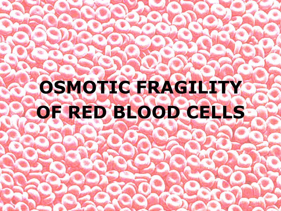 OSMOTIC FRAGILITY OF RED BLOOD CELLS