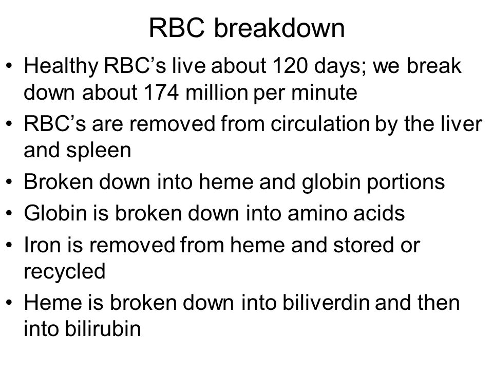 RBC breakdown Healthy RBC's live about 120 days; we break down about 174 million per minute RBC's are removed from circulation by the liver and spleen
