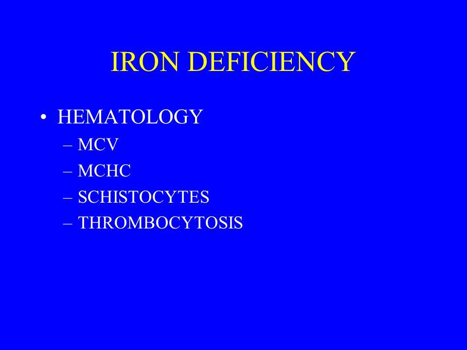 IRON DEFICIENCY HEMATOLOGY –MCV –MCHC –SCHISTOCYTES –THROMBOCYTOSIS