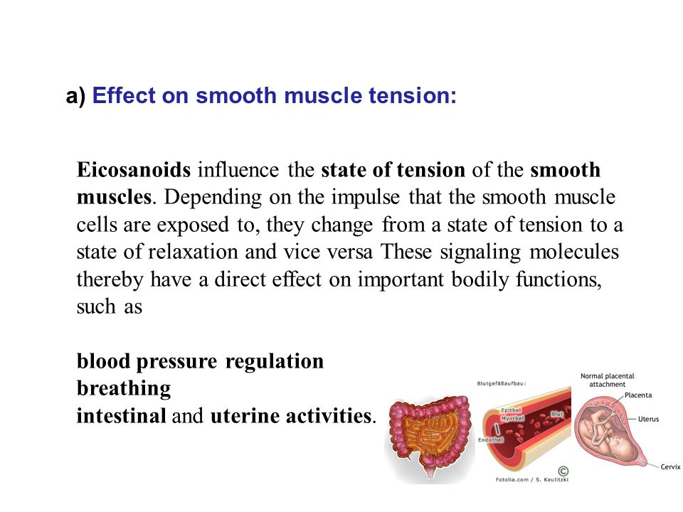 Eicosanoids influence the state of tension of the smooth muscles.