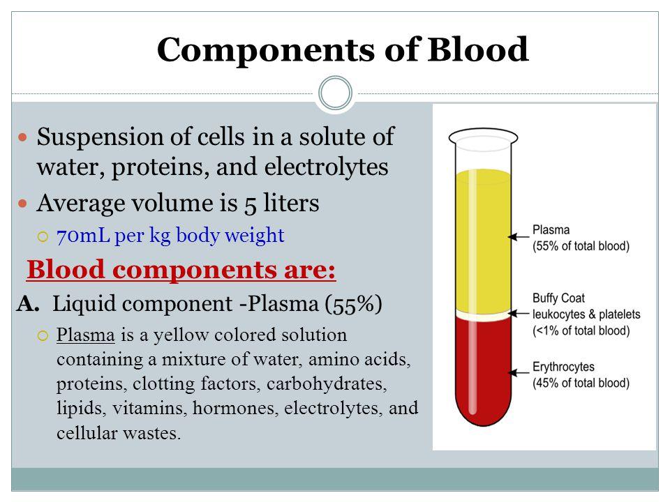 Red Blood Cells Bone marrow Blood RBCs 1 – 2%