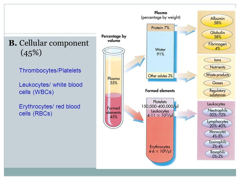 Complete Blood Count (CBC) White blood cells (WBCs) Normal 4,000 -11,000 /µ ℓ  Differential cells: Neutrophils, lymphocytes, monocytes, eosinophils, basophils, Dendritic cells.