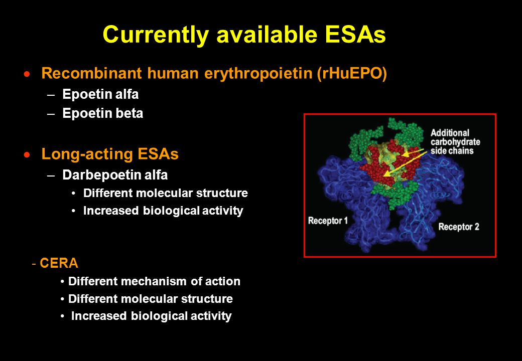Currently available ESAs  Recombinant human erythropoietin (rHuEPO) –Epoetin alfa –Epoetin beta  Long-acting ESAs –Darbepoetin alfa Different molecu