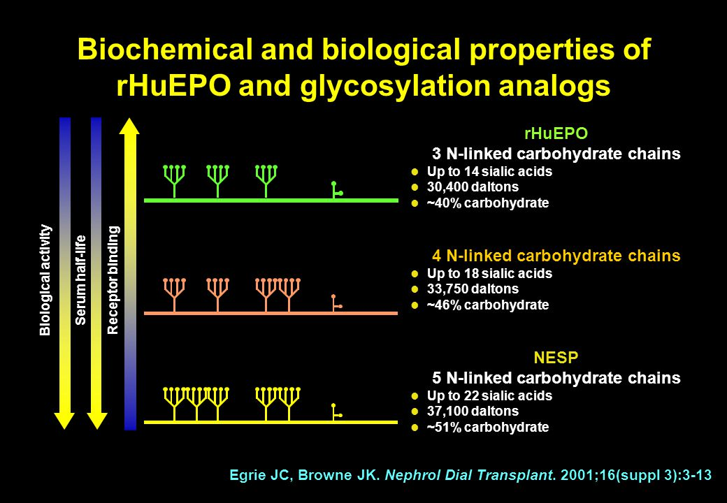 rHuEPO 3 N-linked carbohydrate chains Up to 14 sialic acids 30,400 daltons ~40% carbohydrate Egrie JC, Browne JK.