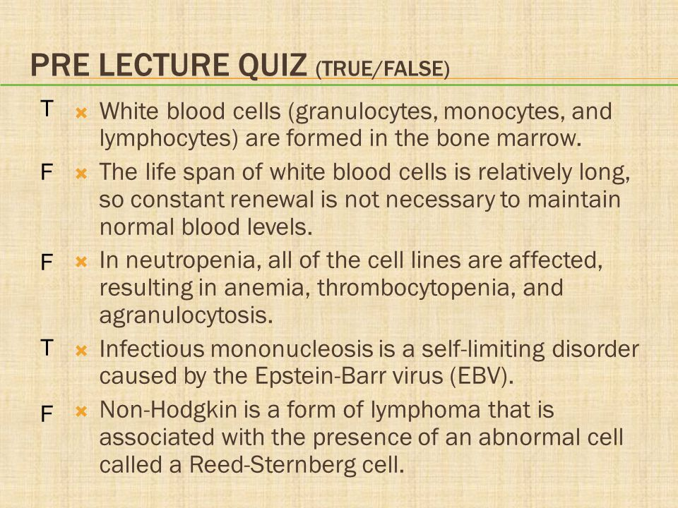 PRE LECTURE QUIZ (TRUE/FALSE)  White blood cells (granulocytes, monocytes, and lymphocytes) are formed in the bone marrow.