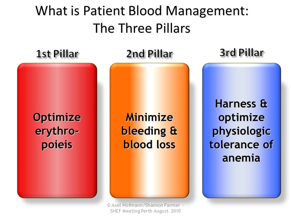 © Axel Hofmann/Shannon Farmer – SHEF Meeting Perth August 2010 Optimize erythro- poieis Minimize bleeding & blood loss Harness & optimize physiologic tolerance of anemia What is Patient Blood Management: The Three Pillars