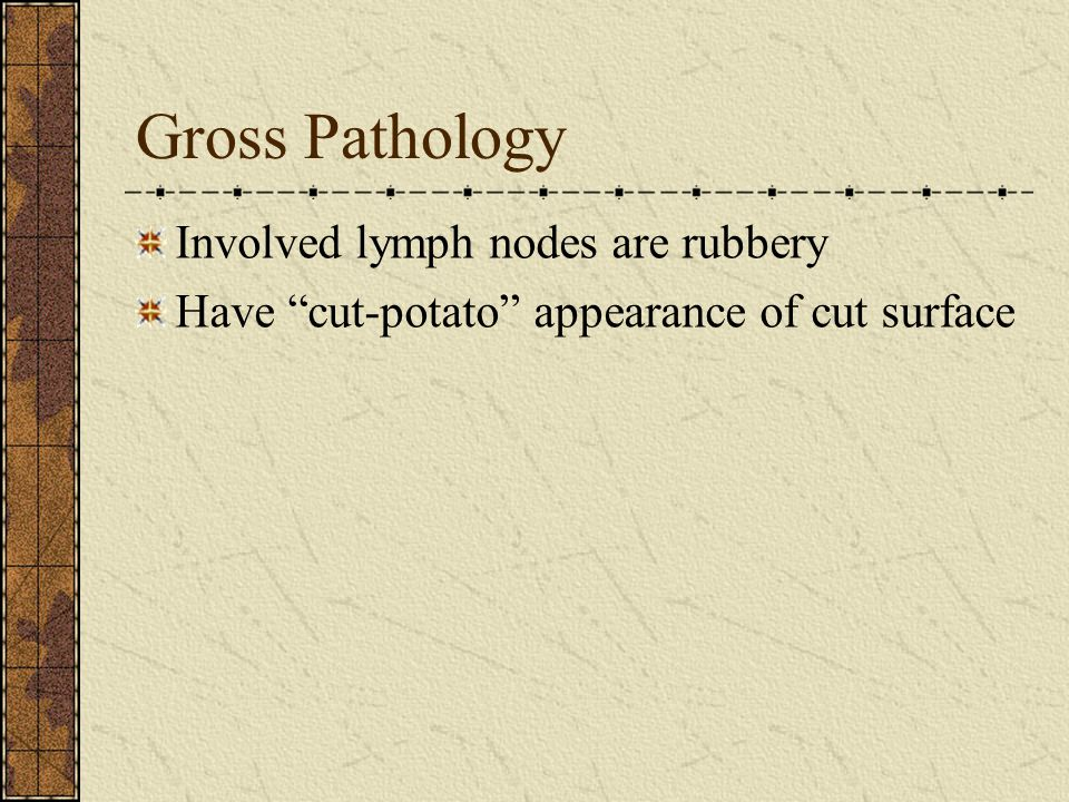 Gross Pathology Involved lymph nodes are rubbery Have cut-potato appearance of cut surface