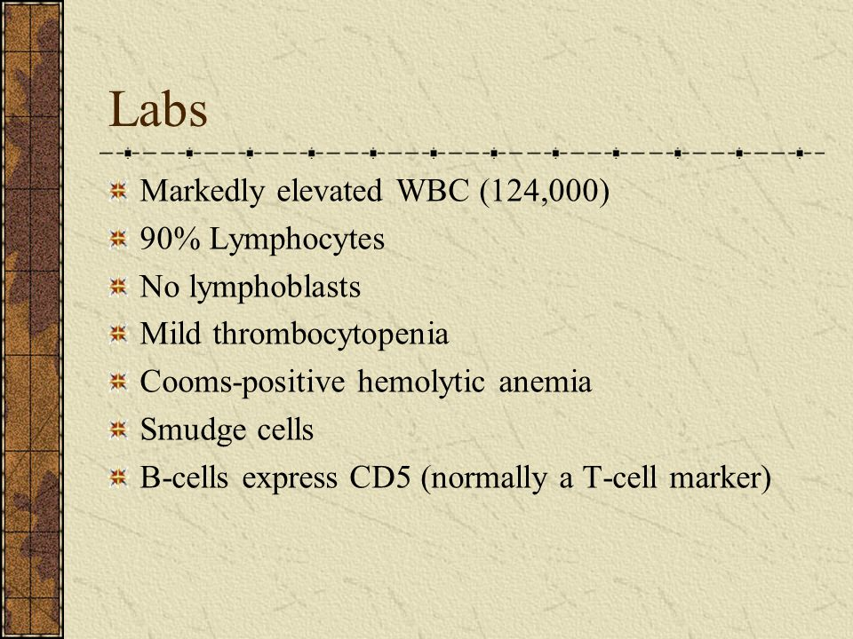 Labs Markedly elevated WBC (124,000) 90% Lymphocytes No lymphoblasts Mild thrombocytopenia Cooms-positive hemolytic anemia Smudge cells B-cells express CD5 (normally a T-cell marker)