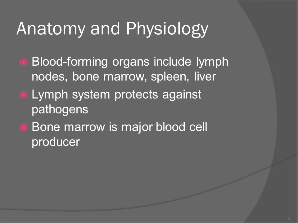 Anatomy and Physiology  Blood-forming organs include lymph nodes, bone marrow, spleen, liver  Lymph system protects against pathogens  Bone marrow