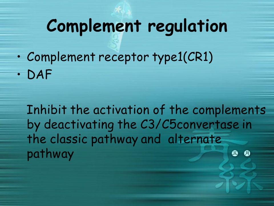 Complement regulation Complement receptor type1(CR1) DAF Inhibit the activation of the complements by deactivating the C3/C5convertase in the classic pathway and alternate pathway