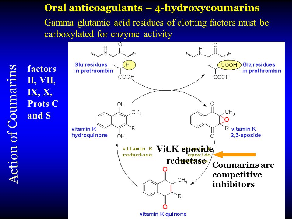 Action of Coumarins Coumarins act here Vitamin K Coumarins are competitive inhibitors Oral anticoagulants – 4-hydroxycoumarins Gamma glutamic acid residues of clotting factors must be carboxylated for enzyme activity Vit.K epoxide reductase factors II, VII, IX, X, Prots C and S