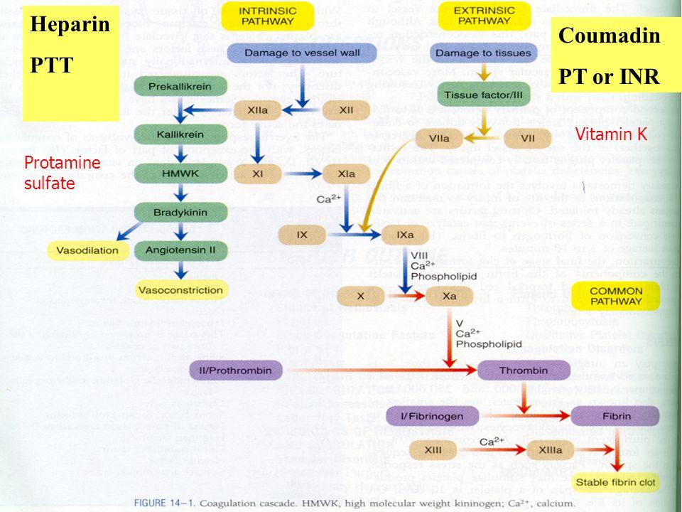 Heparin PTT Coumadin PT or INR Protamine sulfate Vitamin K