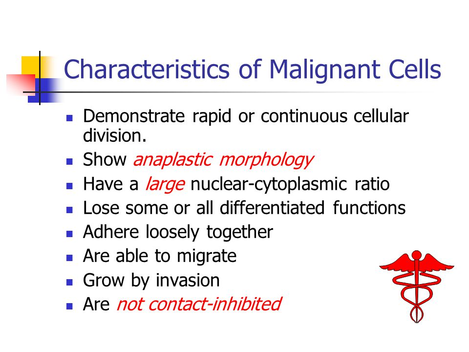 Characteristics of Malignant Cells Demonstrate rapid or continuous cellular division. Show anaplastic morphology Have a large nuclear-cytoplasmic rati