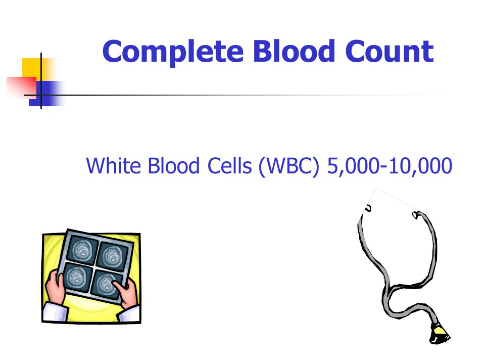 Complete Blood Count White Blood Cells (WBC) 5,000-10,000