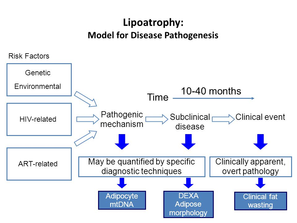 Adipocyte mtDNA DEXA Adipose morphology Clinical fat wasting ART-related Risk Factors Pathogenic mechanism Clinical event Time May be quantified by specific diagnostic techniques Clinically apparent, overt pathology Subclinical disease 10-40 months Lipoatrophy: Model for Disease Pathogenesis Genetic Environmental HIV-related