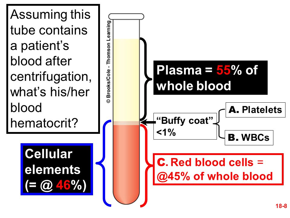 "Cellular elements (= @ 46%) Plasma = 55% of whole blood ""Buffy coat"" <1% A. Platelets B. WBCs C. Red blood cells = @45% of whole blood 18-8 Assuming t"