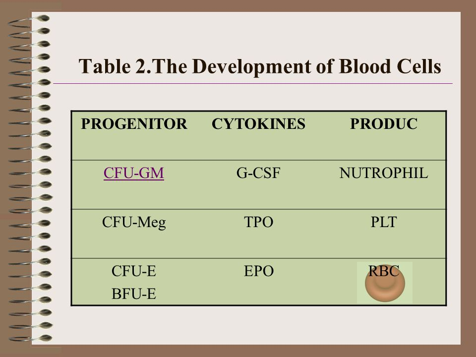 Table 2.The Development of Blood Cells PROGENITORCYTOKINESPRODUC CFU-GMG-CSFNUTROPHIL CFU-MegTPOPLT CFU-E BFU-E EPORBC