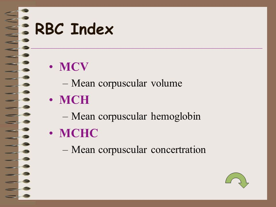 RBC Index MCV –Mean corpuscular volume MCH –Mean corpuscular hemoglobin MCHC –Mean corpuscular concertration