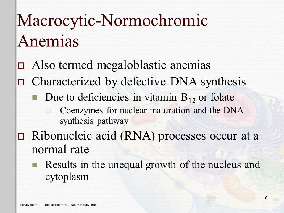 Mosby items and derived items © 2006 by Mosby, Inc. 6 Macrocytic-Normochromic Anemias  Also termed megaloblastic anemias  Characterized by defective