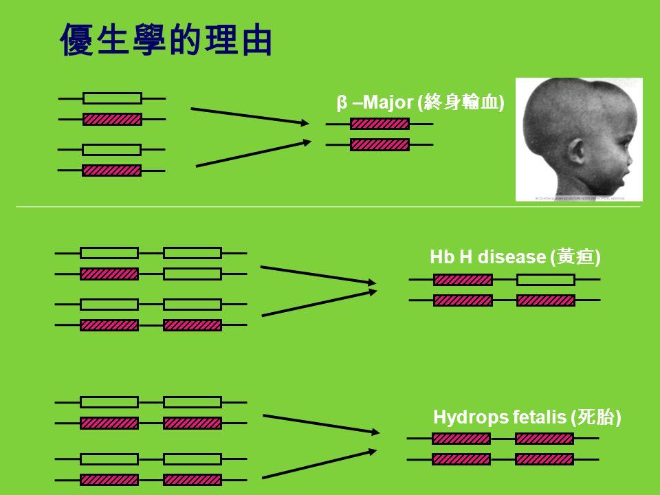 Hb H disease ( 黃疸 ) Hydrops fetalis ( 死胎 ) 優生學的理由 β –Major ( 終身輸血 )