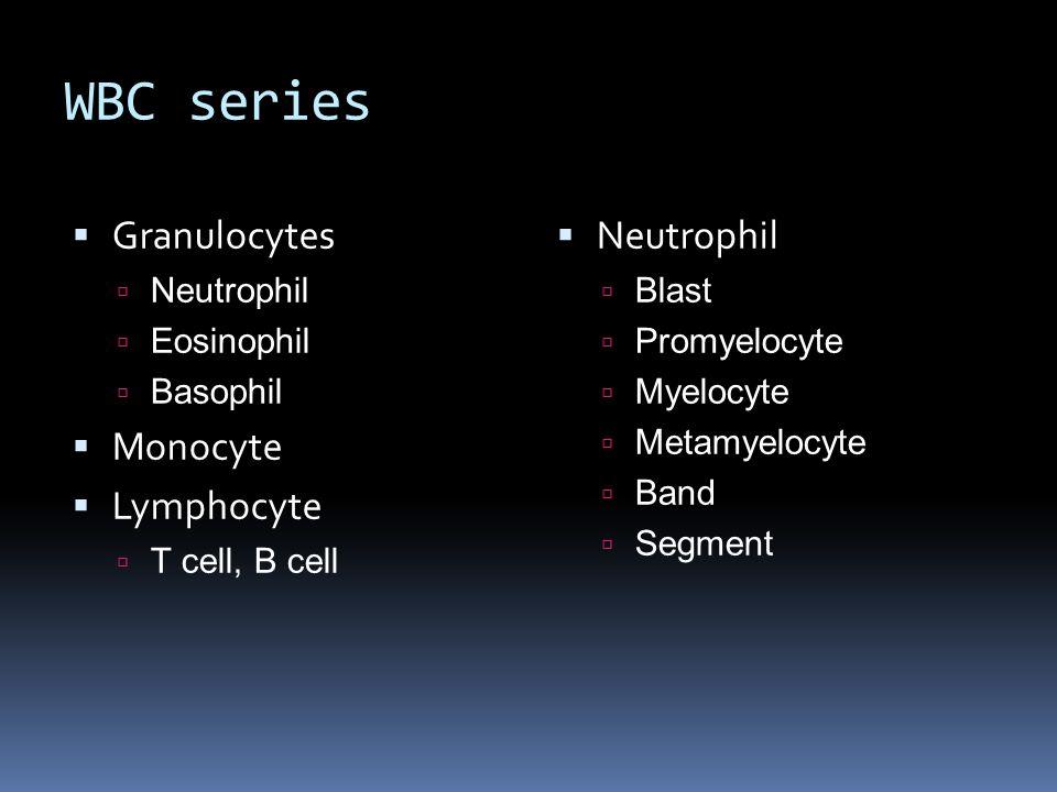 WBC series  Granulocytes  Neutrophil  Eosinophil  Basophil  Monocyte  Lymphocyte  T cell, B cell  Neutrophil  Blast  Promyelocyte  Myelocyt