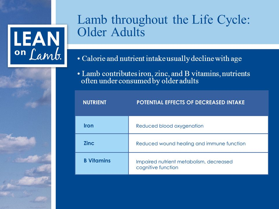 Lamb throughout the Life Cycle: Older Adults Calorie and nutrient intake usually decline with age Lamb contributes iron, zinc, and B vitamins, nutrients often under consumed by older adults